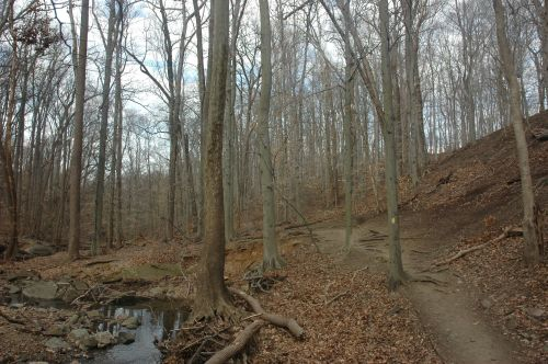 Potomac Overlook Regional Park